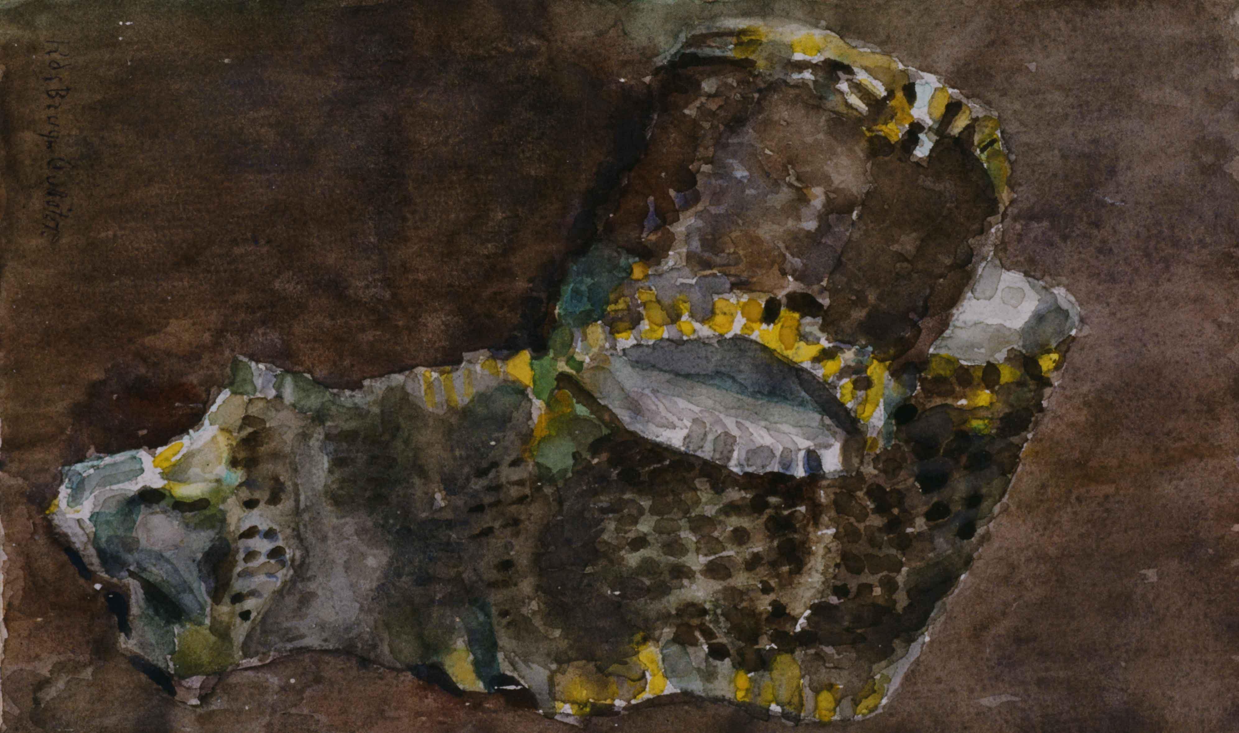 Slangenhuid