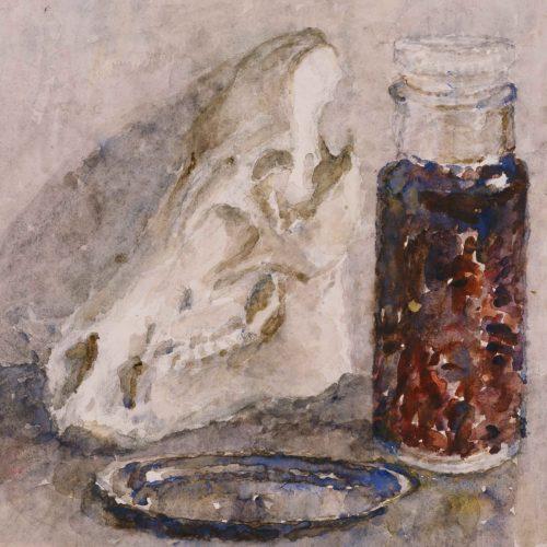 Varkensschedel met fles,tinnen bord